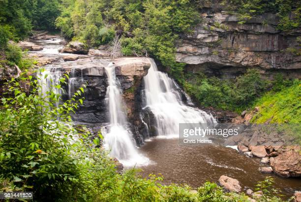 waterfall in forest, blackwater falls state park, west virginia, us - virginia us state stock pictures, royalty-free photos & images