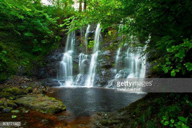 waterfall in glenariff forest park, antrim, county antrim, northern ireland, uk - nature reserve stock pictures, royalty-free photos & images