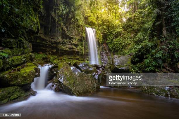 waterfall in green forest, mahua tambunan. - kota kinabalu stock pictures, royalty-free photos & images