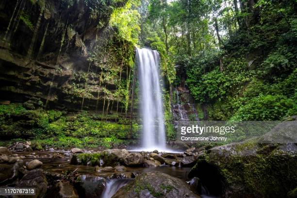 waterfall in green forest, mahua tambunan. - island of borneo stock pictures, royalty-free photos & images