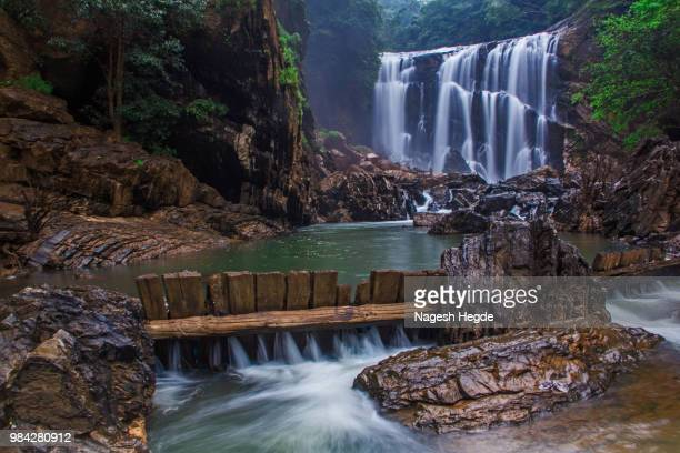 a waterfall in karnataka, india. - karnataka stock pictures, royalty-free photos & images