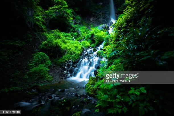 cascada en karuizawa, japón - agua descendente fotografías e imágenes de stock