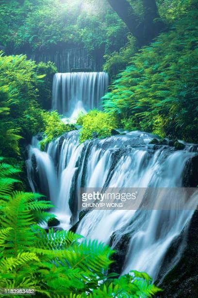 waterfall in karuizawa, japan - falling water flowing water stock pictures, royalty-free photos & images