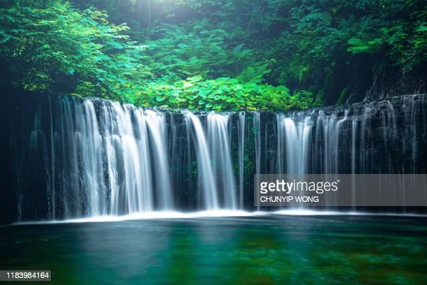 waterfall in karuizawa, japan - waterfall stock pictures, royalty-free photos & images