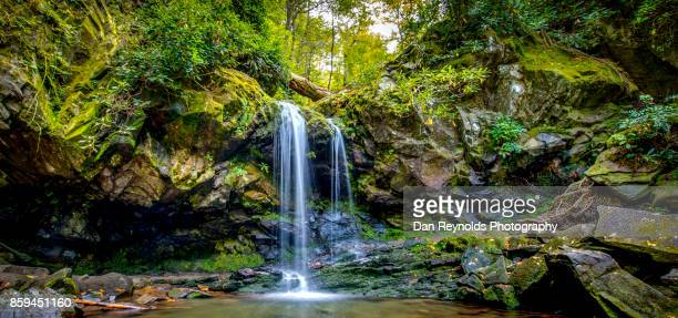 waterfall in mountain setting-pano - parque nacional das great smoky mountains - fotografias e filmes do acervo