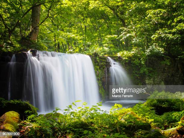waterfall in oirase with green foliage - aomori prefecture stock pictures, royalty-free photos & images
