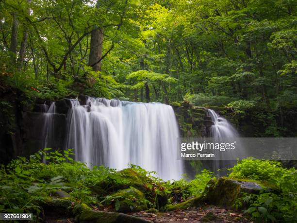 Waterfall in Oirase with Green Foliage