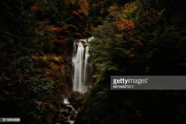 waterfall in shirakawa-go, shirakawa-go, gifu prefecture, japan - miyamoto y ストックフォトと画像