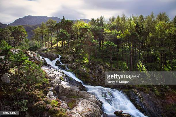 waterfall in snowdonia, north wales - snowdonia stock photos and pictures