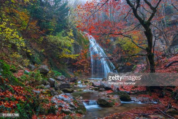 Waterfall in the autumn forest. A stormy stream of water. Red and yellow leaves. Hiking in the mountains. Landscape with water