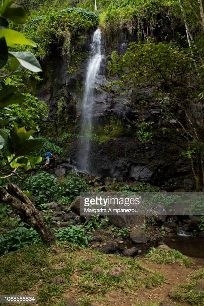 Waterfall in the forest in the tropical Reunion Island