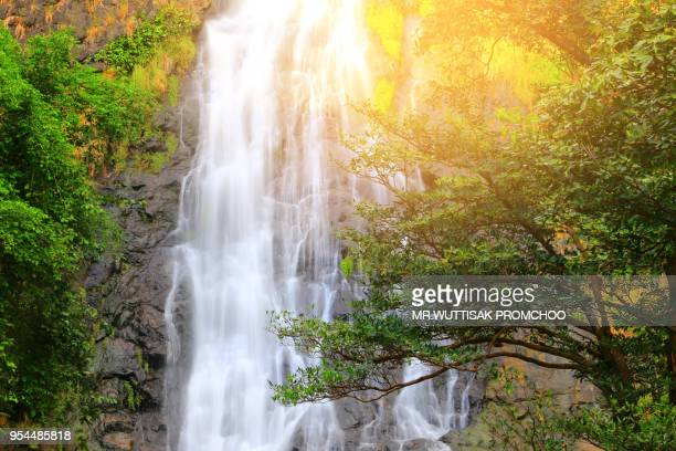 waterfall in the forest sunlight. - spring flowing water stock pictures, royalty-free photos & images