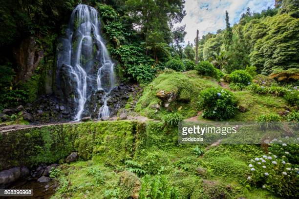 Waterfall in the Nature, Azores Islands