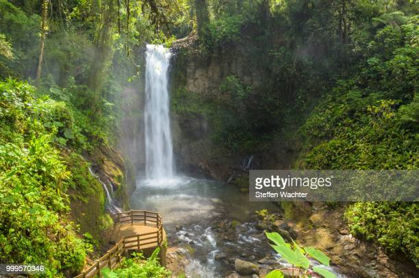 Waterfall in the rainforest, Vara Blanca, Alajuela province, Costa Rica
