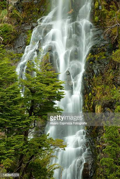 waterfall in trapa valley - trapa stock pictures, royalty-free photos & images