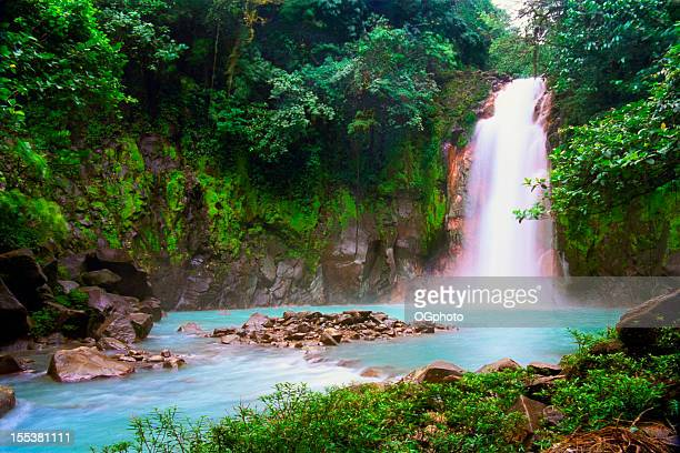 waterfall in tropical rainforest - costa rica stock photos and pictures