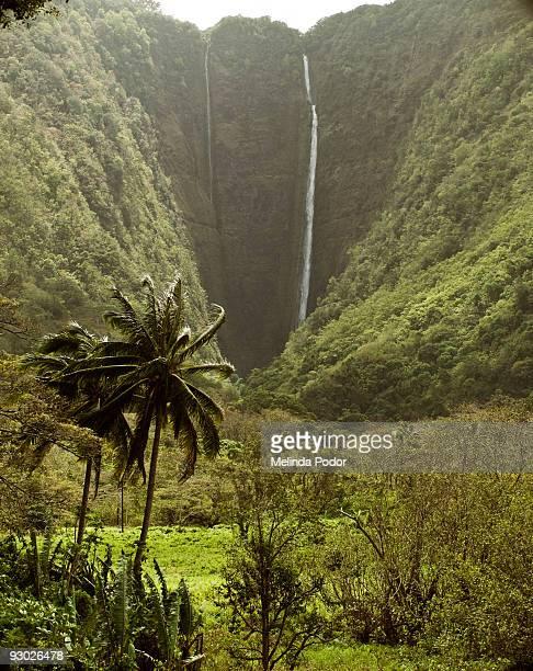 Waterfall in Waipio Valley, Big Island, Hawaii