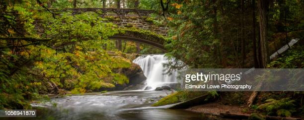 waterfall in whatcom falls park, bellingham, washington. - wpa stock pictures, royalty-free photos & images