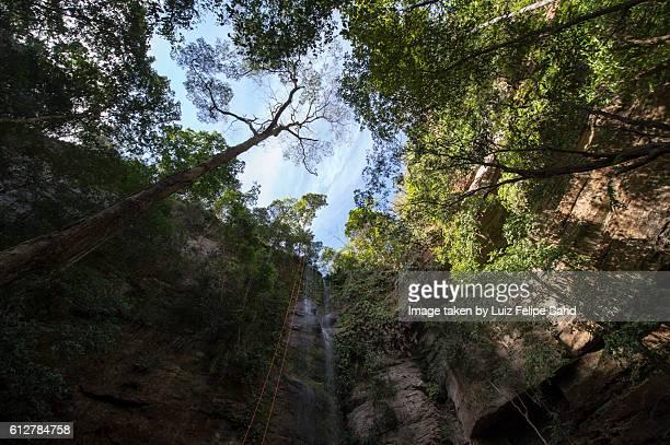 waterfall mouth - palmas tocantins imagens e fotografias de stock