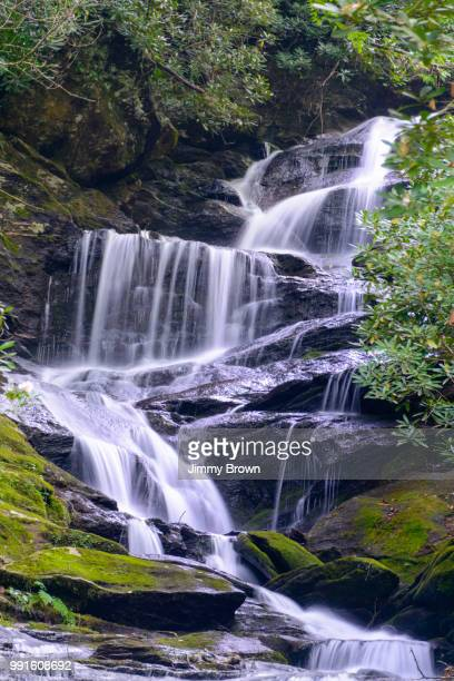 waterfall near mt mitchell nc. - brook mitchell stock pictures, royalty-free photos & images