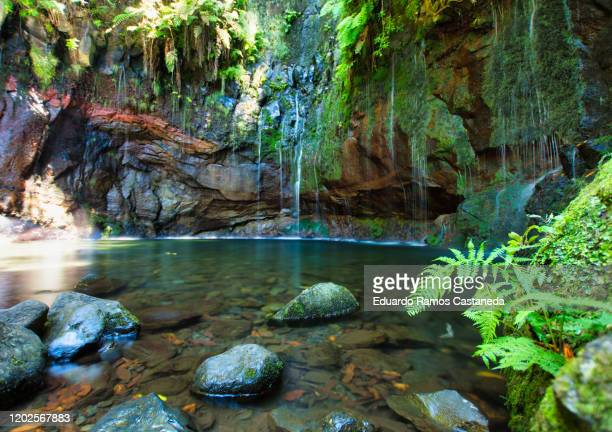 waterfall of the 25 fountains in madeira - ilha da madeira imagens e fotografias de stock