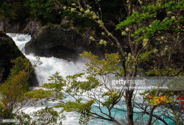 waterfall of the petrohué river framed by vegetation. chile. - petrohue river stock photos and pictures