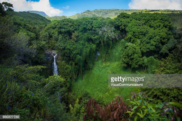 waterfall on pipiwai trail, maui. - maui stock pictures, royalty-free photos & images