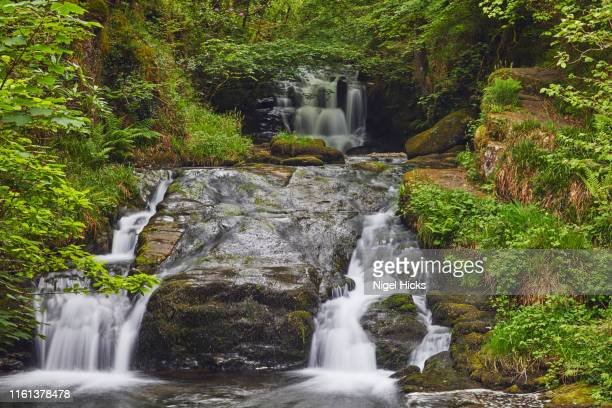 a waterfall on river as it flows through ancient woodland; the east lyn river, at watersmeet, exmoor national park, devon, great britain - nature reserve stock pictures, royalty-free photos & images