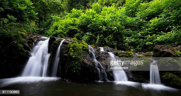 waterfall on road to hana. - water fall hawaii stock pictures, royalty-free photos & images
