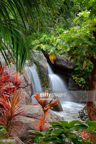 滝に大きな島ハワイ