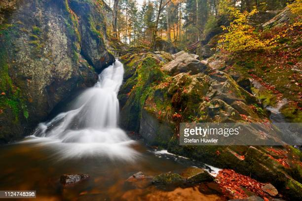 waterfall, petit cascade de tendon, vosges, alsace, france - lorraine stock pictures, royalty-free photos & images