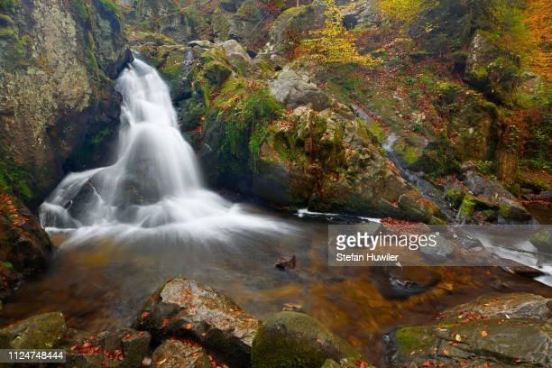 waterfall, petit cascade de tendon, vosges, alsace, france - tendon stock photos and pictures