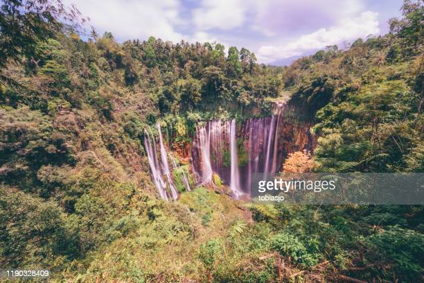 waterfall - tengger stock pictures, royalty-free photos & images