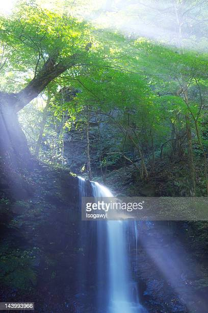 waterfall - isogawyi stock pictures, royalty-free photos & images