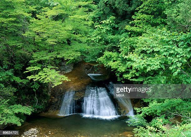 waterfall - takayama city stock pictures, royalty-free photos & images