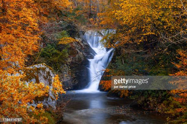 waterfall, rhayader, elan valley, wales - wales stock-fotos und bilder