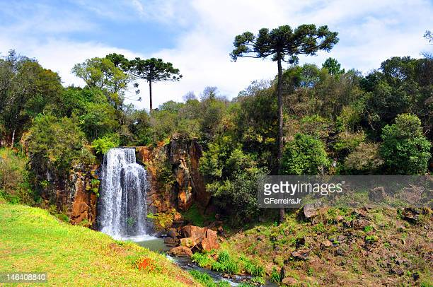 Waterfall Rio das Pedras