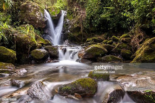 Waterfall, Rwenzoris, Uganda