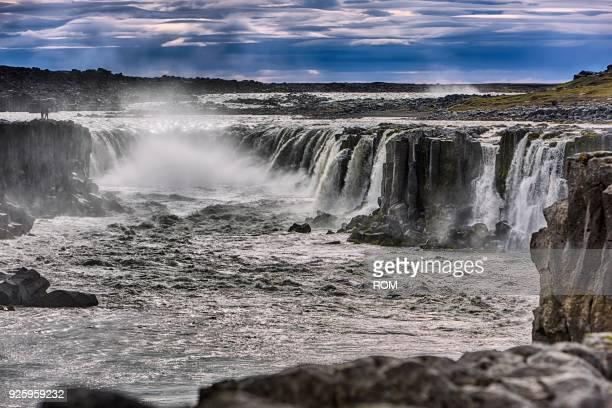 Waterfall Selfoss, Vidhirholl, Nordurland Eystra, Island