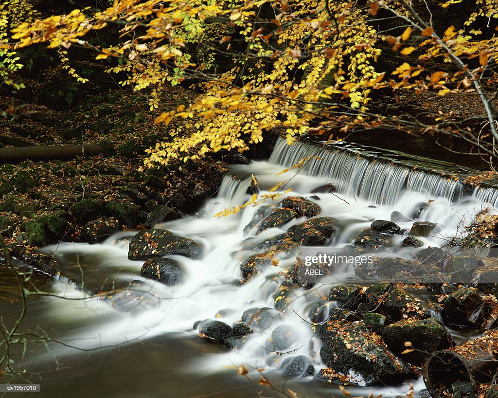 Waterfall, Tayside, Perthshire, Scotland, UK : Stock Photo