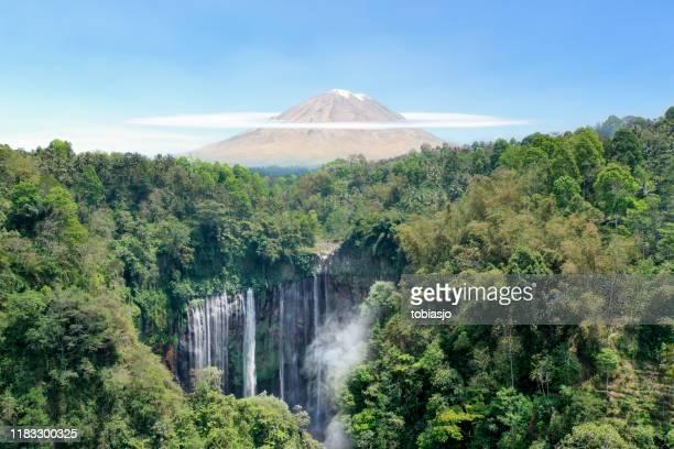 インドネシアの滝、火山、熱帯雨林 - 熱帯雨林 ストックフォトと画像