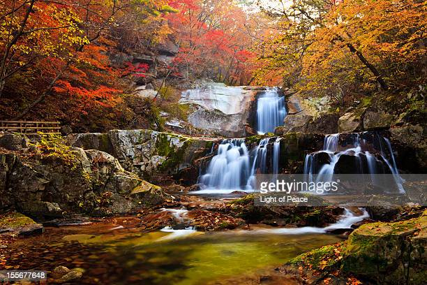 Waterfall with Autumn Foliage