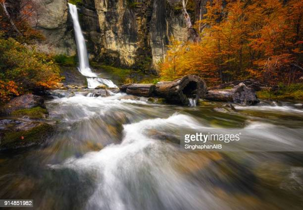 Waterfall with colorful leaves in autumn, Chorrillo del Salto,El chalten, Argentina
