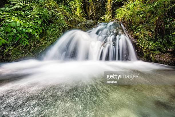 Chute d'eau avec l'eau de source fraîche en Suisse