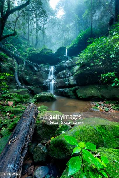 Waterfall (Saithip Waterfall) with stone of green moss in autumn forest
