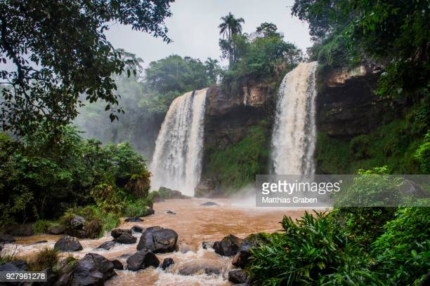 waterfalls adam and eve, iguazu falls, iguazu river, border between brazil and argentina, foz do iguacu, parana, brazil - eve biblical figure stock pictures, royalty-free photos & images