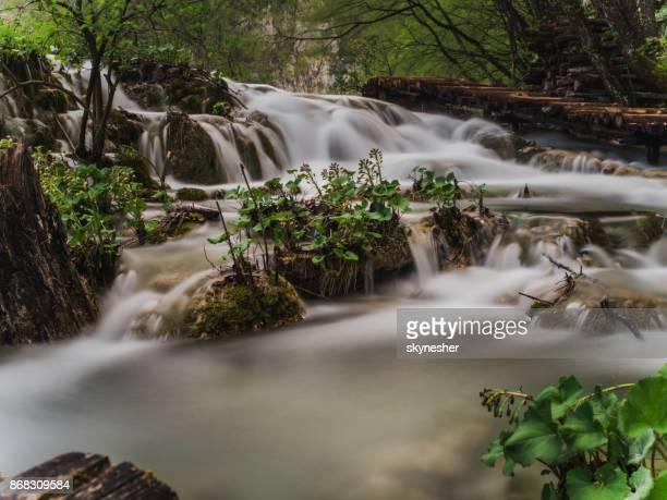 waterfalls and wooden bridge beyond