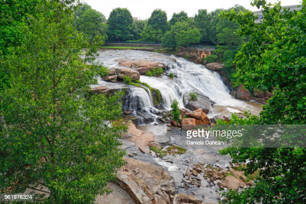waterfalls at falls park in greenville - greenville south carolina stock photos and pictures