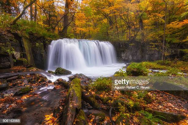 Waterfalls during autumn in Oirase Stream