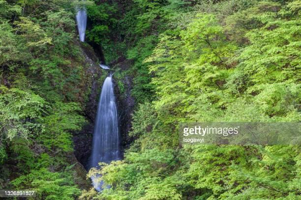 waterfalls in fresh green - isogawyi - fotografias e filmes do acervo